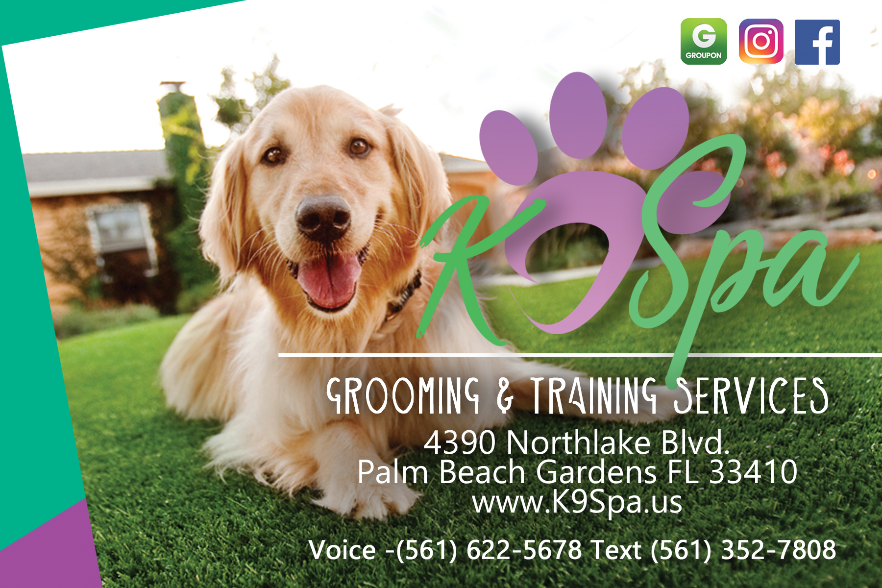 K9 Spa New Customer Promo Code CLEANUP